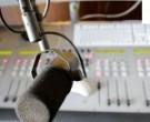 """Kauno kredito unijos vadovė tiesioginėje radijo laidoje """"Litas prie lito"""""""
